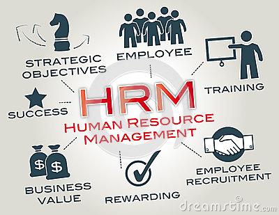 Talent Management & Career System